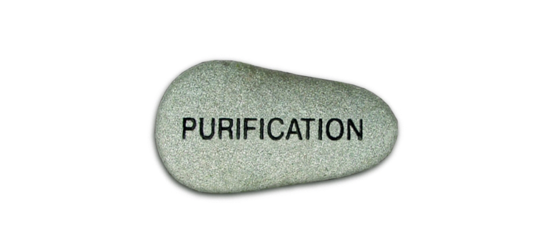 pc22purification