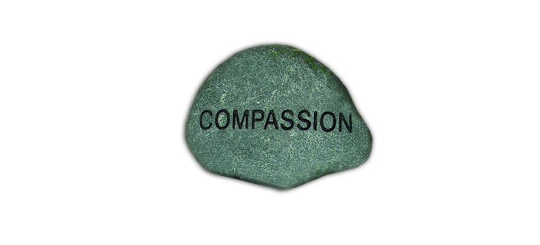 pc33compassion
